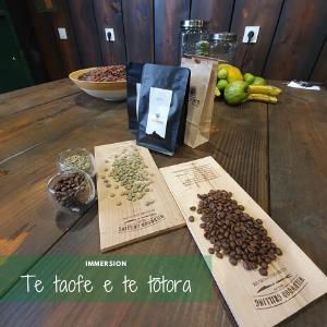 immersion à Tahiti découverte du café local